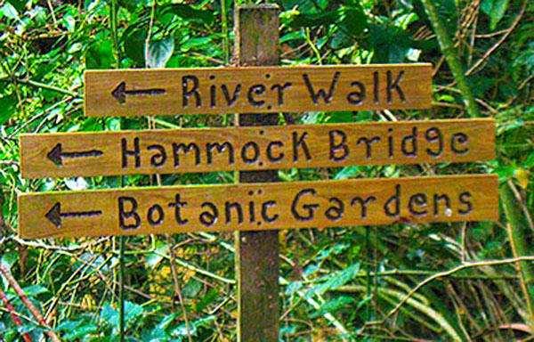 Medicine Trail Signage