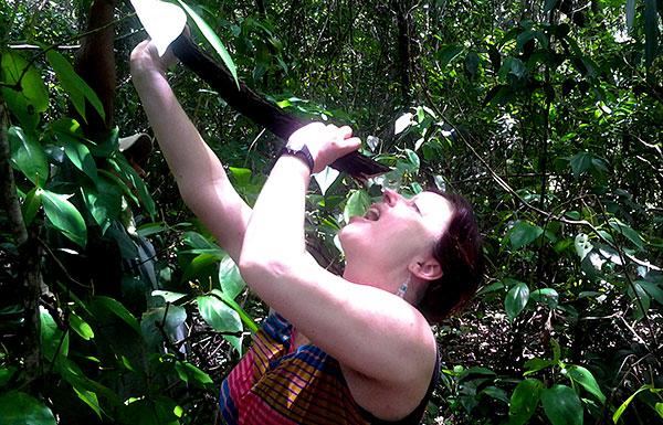 Sampling fresh tasting water from the water-vine